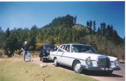 Family tour to Madeira countryside, 2000