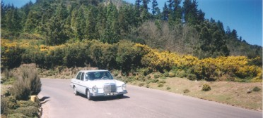 Family tour to Madeira countryside, 2000